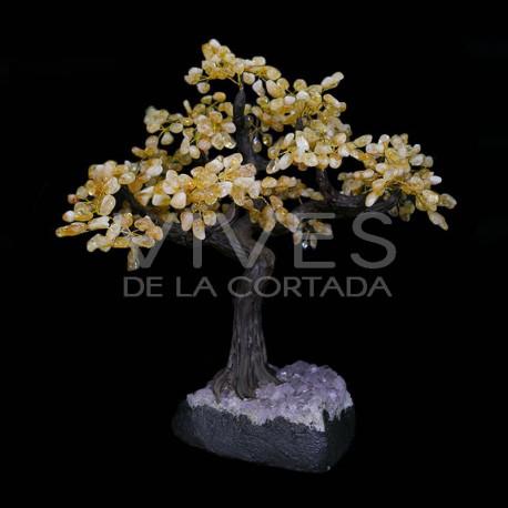 Bonsai de Citrino con Base de Drusa Amatista (AR7)